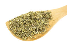 Wood spoon filled with organic wormwood Stock Image
