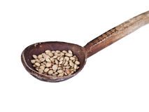 Wood spoon with lentils isolated Stock Images