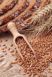 Wood spoon with wheat grains Royalty Free Stock Image
