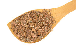 Wood spoon with witch hazel bark Royalty Free Stock Image