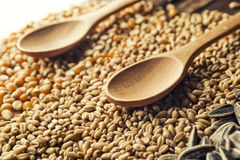 Wood spoons and grains Stock Image