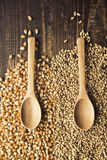 Wood spoons and grains Royalty Free Stock Photo