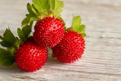 Free Wood Srawberry Fragaria Vesca On An Old Wooden Background Royalty Free Stock Image - 151024446