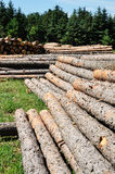 Wood Stack Royalty Free Stock Photography