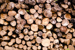 Wood stack Royalty Free Stock Photos