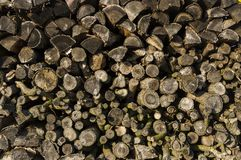 Wood stack of neatly stacked firewood and small wood to dry for. Firewood, firewood, raw material, wood rental Stock Photography