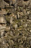 Wood stack of neatly stacked firewood and small wood to dry for. Firewood, firewood, raw material, wood rental with selective focus Royalty Free Stock Image