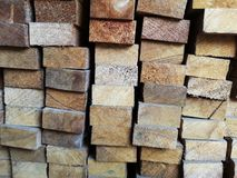 Wood stack Stacked together cross section Nature cut into pieces for decorating work or Structure. Wood stack Stacked together Nature cut into pieces for stock images