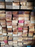 Wood stack Stacked together Nature cut into pieces for decorating work or Structure Texture surface background plant. Closeup Wood stack Stacked together royalty free stock image