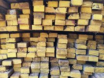 Wood stack Stacked together Nature cut into pieces for decorating work or Structure Texture surface background plant. Closeup Wood stack Stacked together stock images