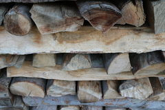 Wood - stacked. Treatment of wood, forestry. stacked Stock Images