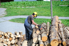 Wood stacking in summer for warmth in winter Royalty Free Stock Image