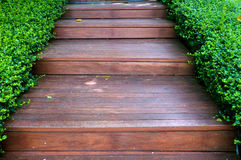Wood stair way on green garden Royalty Free Stock Photo