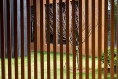 Wood staket för Anticorrosive Arkivbilder