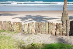 Wood staket för palmträdstam i stranden Royaltyfri Fotografi