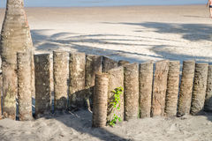 Wood staket för palmträdstam i stranden Fotografering för Bildbyråer