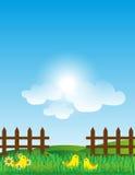 Wood staket With Grass Landscape Arkivbild