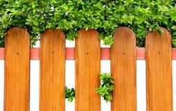 Wood staket och grön buske Arkivfoton