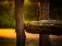 Wood staket på solnedgången Royaltyfria Bilder