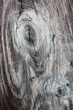 Wood staketplanka med fnurror arkivfoton