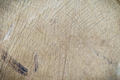 Wood stam för textursnittträd Arkivbild