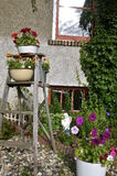 Wood step ladder with plants and flowers Stock Image