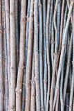 Wood stick Pattern. Nature Background Stock Image