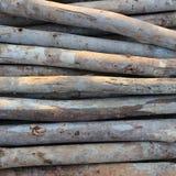 Wood sticks Royalty Free Stock Image