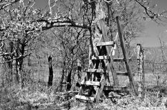 A Wood Stile Over a Fence stock photography