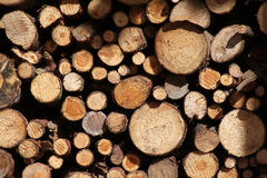 Wood stock. A bunch of cut wood stock photos