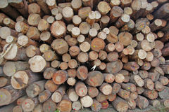 Wood stock Stock Images
