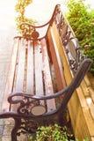Wood stol i trädgård med soluppgång kopiera avstånd arkivfoton