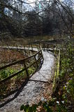 Wood strandpromenad. Royaltyfria Bilder