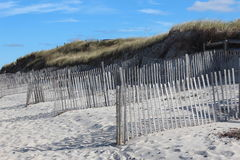Wood strap fencing. Lines of weather fencing set up to protect the dunes of cape cod Royalty Free Stock Image
