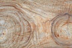 Wood stubbe för gammal teakträ Arkivbilder