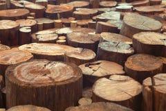 Wood stubbebakgrund för teakträ med den smala fokusen Arkivbild