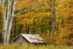 Wood stuga som omges av nedgångfärgträd Royaltyfri Bild