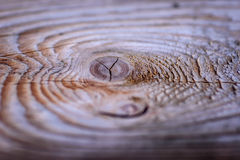 Wood stump with knot and tree rings Royalty Free Stock Photos