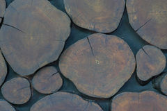 Wood stump. Remainder , can bring decorate area a building has beautiful Stock Image