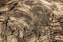Wood surface Royalty Free Stock Image