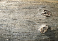 Wood surface. With a dry and wear marks Royalty Free Stock Image