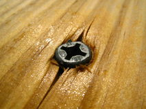 Wood Surface and Screw. A moist wood surface is penetrated by a screw Royalty Free Stock Images