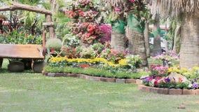 Wood swing in the flowers garden, HD vdo. stock footage