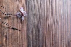 Wood tabell med sukura Arkivbilder