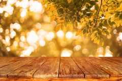 Wood table with autumn abstract background. Royalty Free Stock Photo