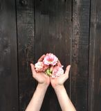 Flowers. Wood table and bouquet in hands stock images