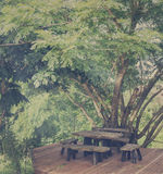 Wood table and chair under tree Stock Photos