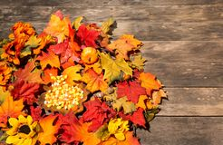 Wood table with fall halloween candy decor Stock Image