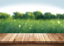 Wood table and green grass blurred background Royalty Free Stock Photography