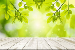 Wood table and Green leaves hanging with green blurred backgrounds. royalty free stock image